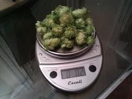 hop scale